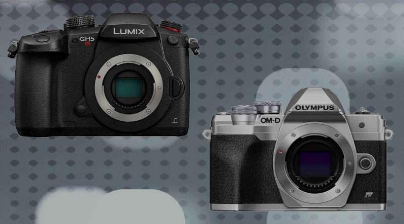 Panasonic Lumix GH5S vs Olympus OM-D E-M10 Mark IV - Comparison